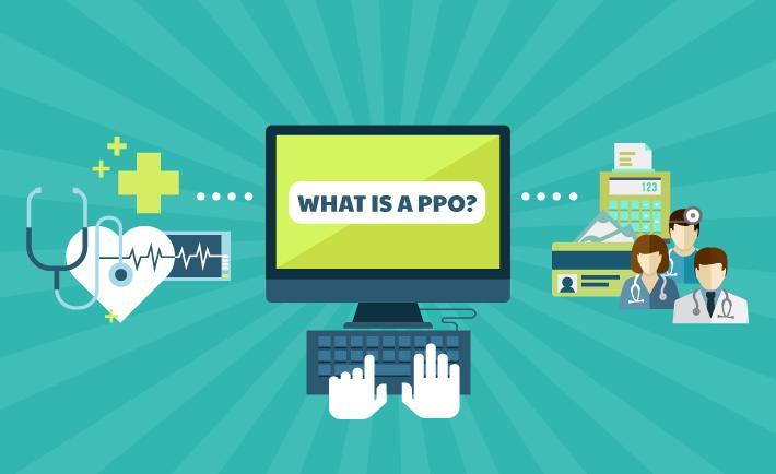 Web search PPO