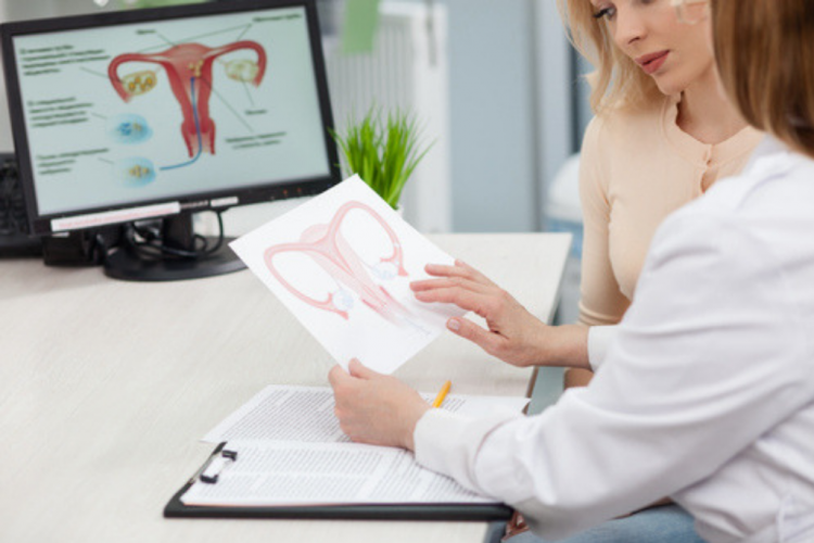 doctor woman uterus