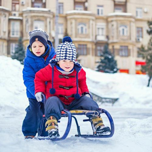 Kids sled through snow